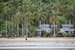Bungalows on a tropical beach. Royalty Free Stock Photo