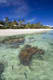 Bungalows on tropical beach, with coral reef Stock Photos