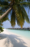 Bungalows on a tropical island. Resort with white sand Royalty Free Stock Photography