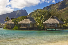 Bungalows on tropical island of Moorea Royalty Free Stock Image