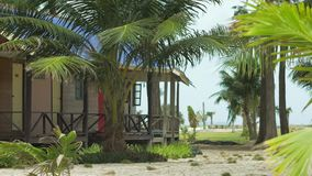 Bungalows and tropical palm trees in a slight breeze on sandy beach.  stock video