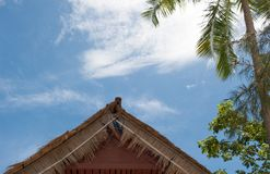 Bungalowtaket på bakgrund för blå himmel Royaltyfri Bild