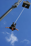 Bungee Royalty Free Stock Image