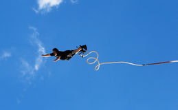 Bungee Royalty Free Stock Photo