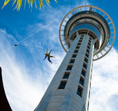 Bungee on Auckland Sky Tower Royalty Free Stock Photography