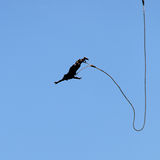 Bungee jumping. Silhouette of a man jumping with a rope on a background of blue sky Royalty Free Stock Photos