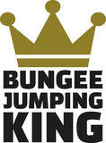 Bungee jumping king Stock Image