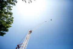 Bungee jumping man Stock Images