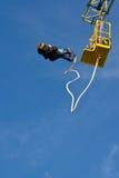 bungee pary doskakiwanie Zdjęcie Royalty Free