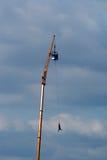 bungee skok Obrazy Stock