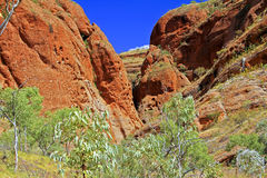 Bungle Bungles (Purnululu) - Purnululu National Park Stock Photography