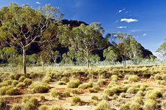 Bungle Bungles (Purnululu) - Purnululu National Park Stock Photos