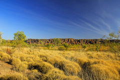 Bungle Bungles (Purnululu) - Purnululu National Park Royalty Free Stock Photos