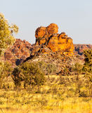 Bungle Bungles in Western Australia Royalty Free Stock Images