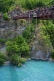 bungy скача Новая Зеландия Стоковое Изображение