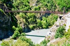 Bungy branchant, Nouvelle Zélande Photo libre de droits