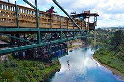 Bungy jump in Taupo New Zealand Royalty Free Stock Photos