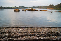 Bunh птиц на реке Стоковая Фотография RF
