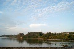 Bunh птиц на реке Стоковые Изображения