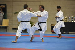 bunkai filiżanki europejski karate kata mistrz Obrazy Stock