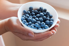 Bunke av blåbär i händer Royaltyfri Fotografi