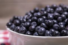 Bunke av blåbär fotografering för bildbyråer
