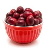 Bunke av cranberries Royaltyfria Foton