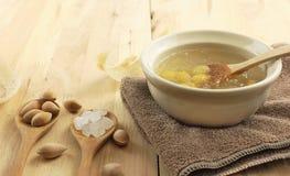 Bunke av frö för soppa och för ginkgo för svalarede klart fotografering för bildbyråer