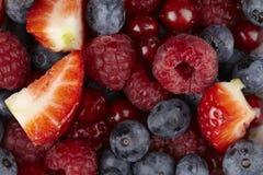 Bunke av fruktsallad - nära övre Arkivbilder