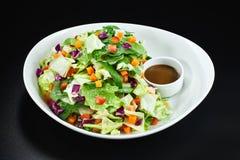 Bunke av grönsaker sallad och sås Royaltyfria Bilder