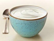 Bunke av grekisk yoghurt royaltyfri bild