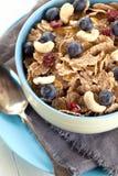 Bunke av hemlagad granola med yoghurt och nya bär på trä arkivfoto