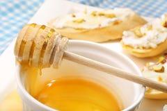 Bunke av honung och bruschetta med pistascher för getost Royaltyfri Bild