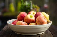 Bunke av nya valda äpplen Royaltyfria Foton