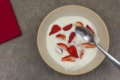Bunke av nytt gjord yoghurt med stora bitar av strawberrys Royaltyfria Foton