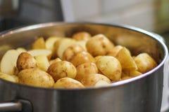 Bunke av nytt kokade potatisar Arkivbilder