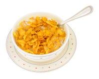 Bunke av sädes- frukosthavreflingor Fotografering för Bildbyråer