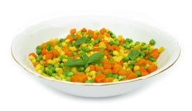 Bunke av tärnade grönsaker royaltyfri fotografi