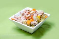 Bunke av tonfisk och grönsaksallad Fotografering för Bildbyråer