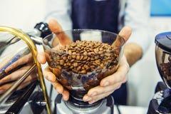 Bunke för kaffekvarn för Barista man hållande med nya grillade kaffebönor i coffee shop- eller kaféstång Selektiv fokus, utrymme  fotografering för bildbyråer