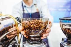 Bunke för kaffekvarn för Barista man hållande med nya grillade kaffebönor i coffee shop- eller kaféstång Selektiv fokus, utrymme  royaltyfri foto