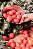 Bunke i hand på matmarknaden fotografering för bildbyråer