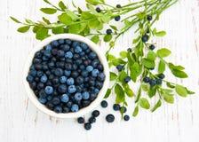 Bunke med blåbär Royaltyfri Foto