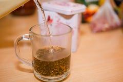 Bunke med Tea Häll vatten i te ny tea Royaltyfri Fotografi