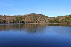 Bunken, Acadianationalpark Arkivfoto