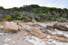 Bunker Bay: Dune Plants and Granite Formations Royalty Free Stock Images