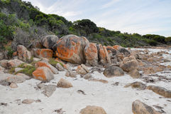 Bunker Bay: Orange Granite with Coastal Dunes Royalty Free Stock Photos