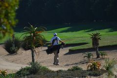 Bunker golfer. Golfer approaches ball in sand bunker at Cape Town golf course Stock Photos
