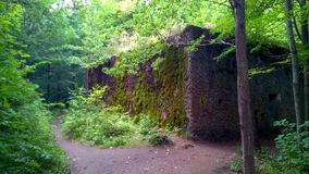 Bunker in Wolf`s Lair. Bunker hidden in green forest. Wall is covered in moss Royalty Free Stock Image