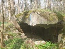 Bunkerbaum стоковые изображения